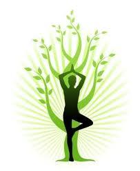 Yoga Studio Hire, Dubai - Call now 04 3709676